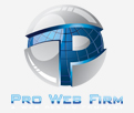 Pro Web Firm